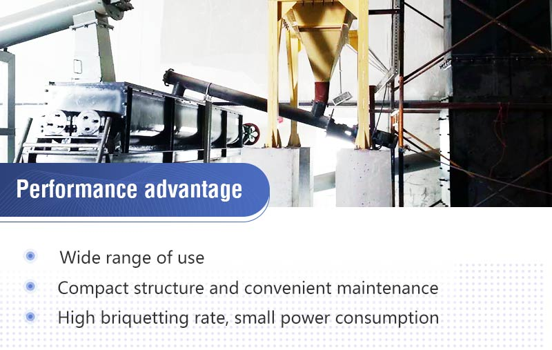 Mineral Powder Briquetting Machine Feature.jpg