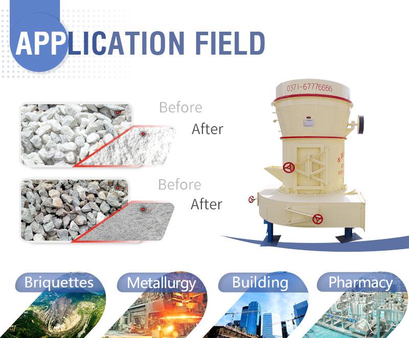 Raymond Mill Application.jpg