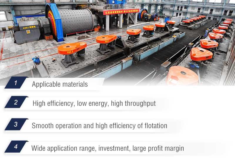 Flotation Plant Advantages.jpg