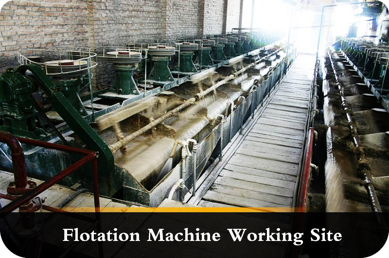 Working site of froth flotation .jpg