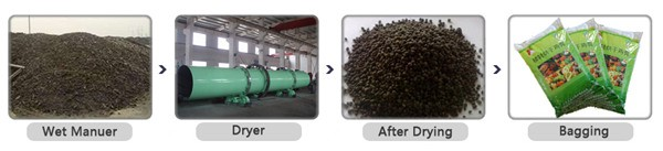 Chicken Manure Dryer Drying Process